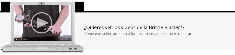 TAGLINE-VIDEOS-BRISTLE